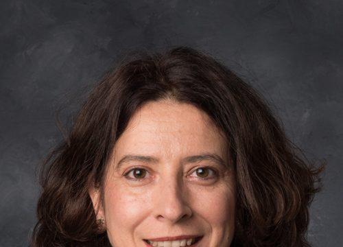 Ana Merino